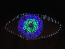 Photo of In the eye of the beholder