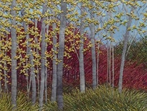 Photo of Fall Aspen Stand
