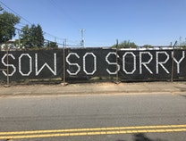 Photo of Sow So Sorry