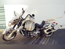 Photo of Mad Cow Motorcycle Project  WVOBiodiesel Motorcycle